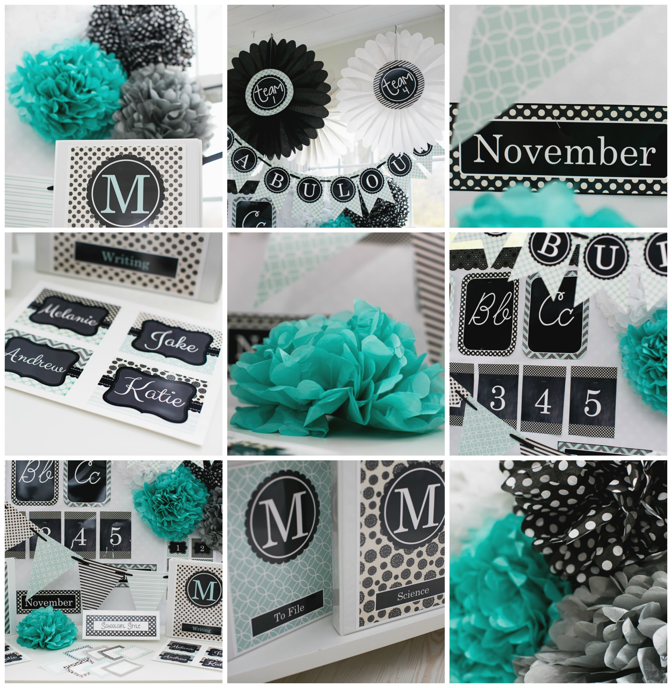 Black and teal themed classroom ideas home design inside for Black and white and turquoise bedroom ideas
